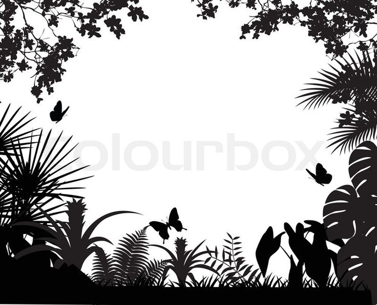 Stock Vector Of Tropical Forest Silhouette Forest