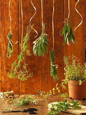 How to Dry Herbs, Hang Drying   Taste of Home Recipes