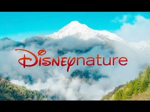 Рождённый в Китае. трейлер (Дисней природа, Приключения документальное -...