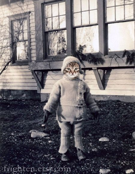 5x7 Cat Art Print Kitten's Mittens Altered Vintage by frighten