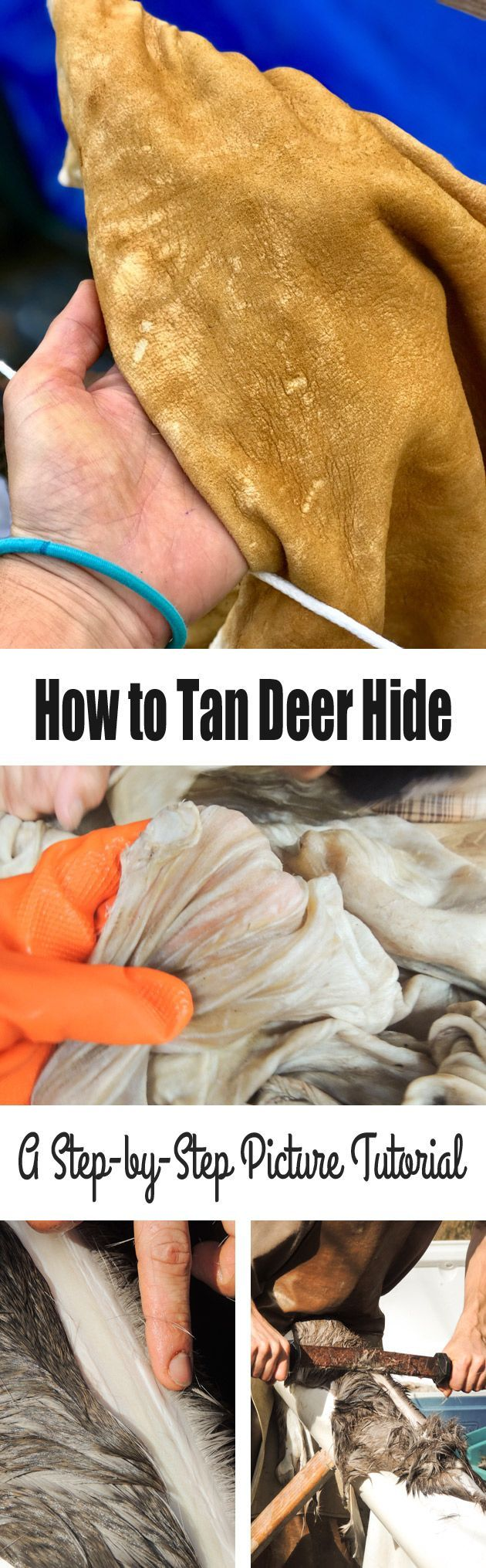 Join me for a step by step picture tutorial on how to tan deer hide. Let me show you the traditional method of turning deerskin into workable buckskin. #LadyLeesHome #deer #hunting #hidetanning #buckskin #leatherwork