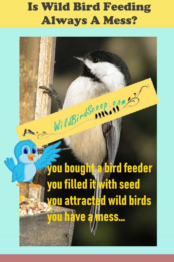 Bird Feeder Mess By Seed Tossed Out Of The Feeder Can Be Fixed Humming Bird Feeders Attract Wild Birds Bird Feeders