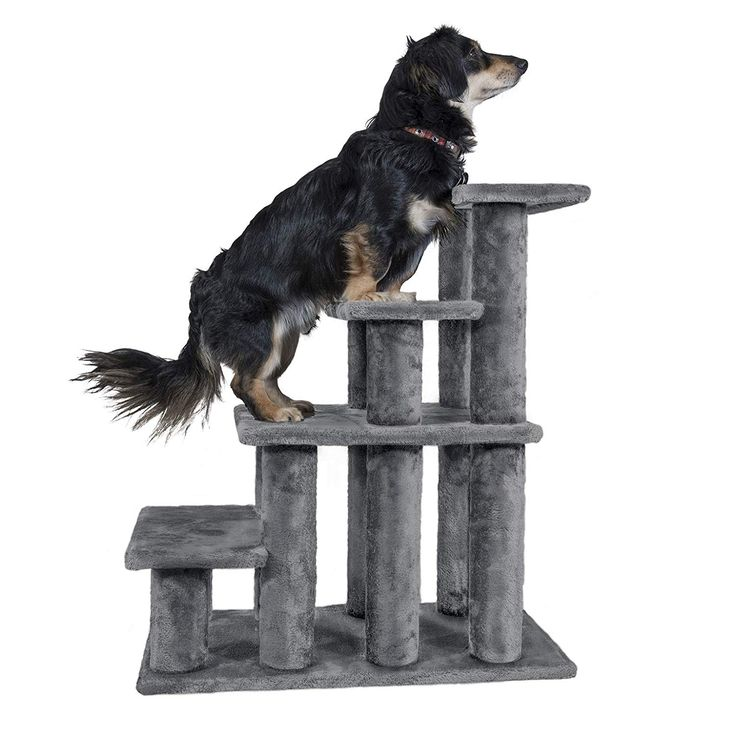 Furhaven Pet Stairs Steady Paws MultiStep Pet Stairs