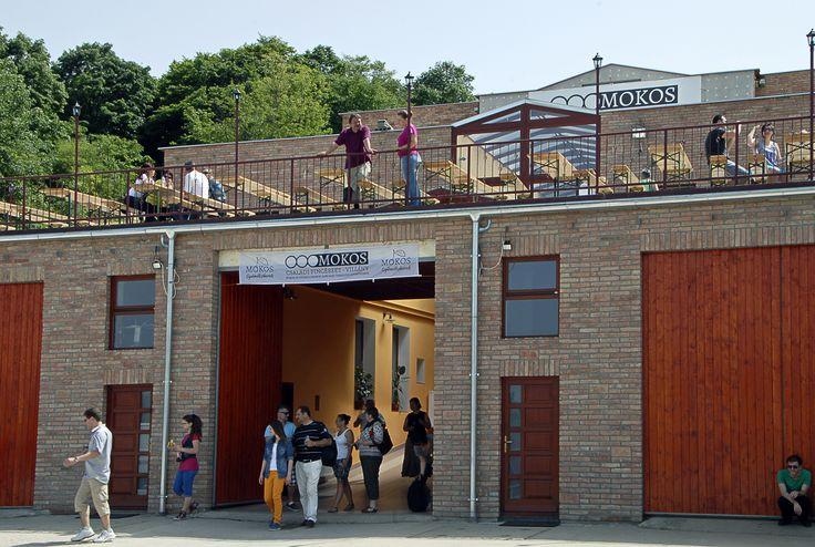 Mokos Winery -Mokos Pincészet