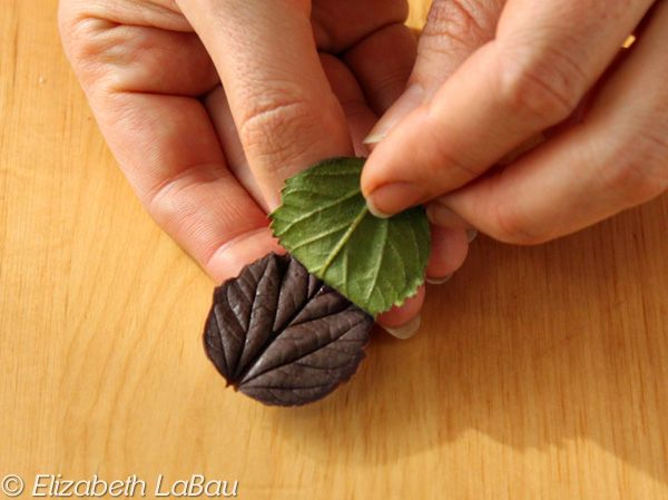 How to Make Chocolate Leaves - Photo Tutorial: Peel the Leaves Off the Chocolate