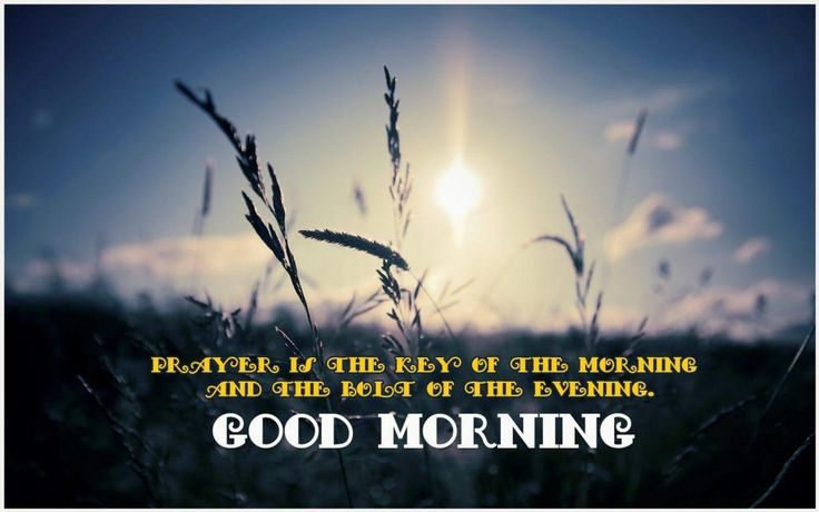 Prayer Is The Key Of Morning | prayer is the key of the morning, prayer is the key of the morning and the bolt of the evening essay, prayer is the key of the morning and the bolt of the evening mahatma gandhi, prayer is the key of the morning and the bolt of the evening meaning