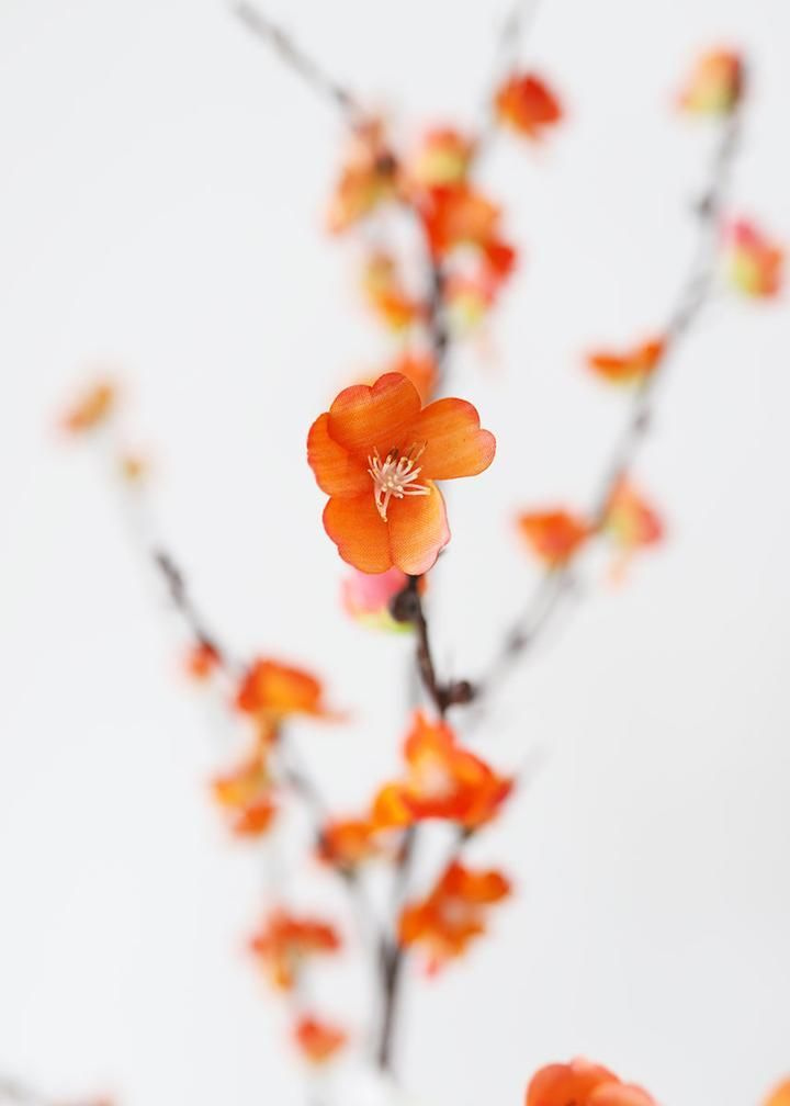 Artificial Sakura Cherry Blossom In Orange 50 Artificial Blossom Cherry Orange Sakura In 2020 Cherry Blossom Branch Spring Wedding Flowers Discount Silk Flowers
