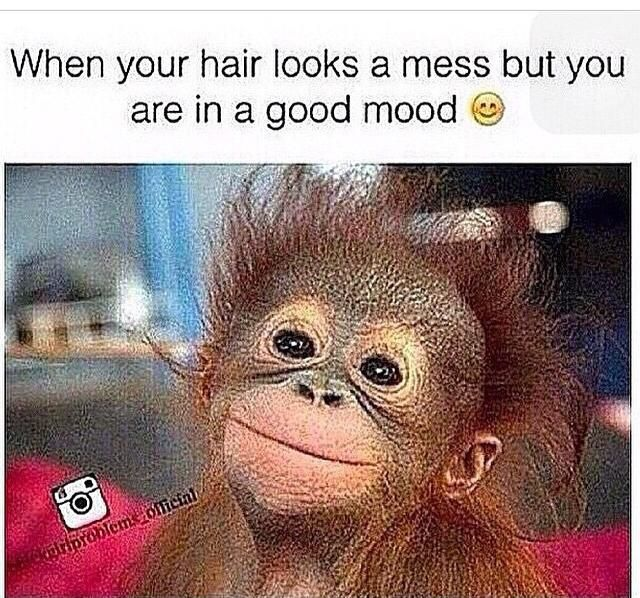 Yup! - http://www.blackhairinformation.com/community/hairstyle-gallery/memes-and-general/yup/ #memes