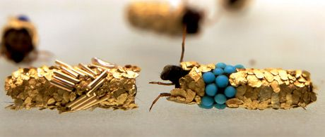 This 2007 profile of Hubert Duprats work with caddis fly larvae is a tiny, entomological miracle. The larvae build their cocoons with whatever material is at hand; Duprat forces them to build with gold and precious gems, making spectacular bio-organic jewelry.