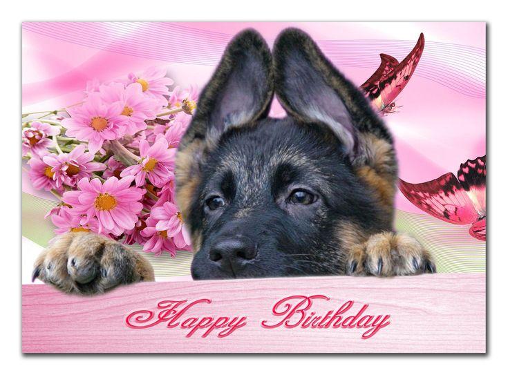 поздравления с днем рождения с фото овчарки краю вечной