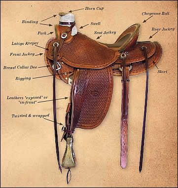Colorado Western Saddles & Saddles For Sale  