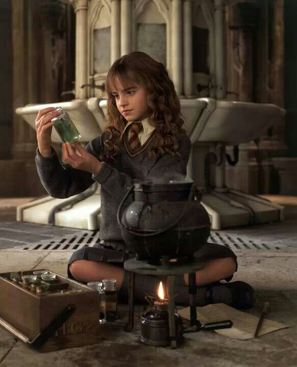 Remember this scene? Polyjuice Potion.