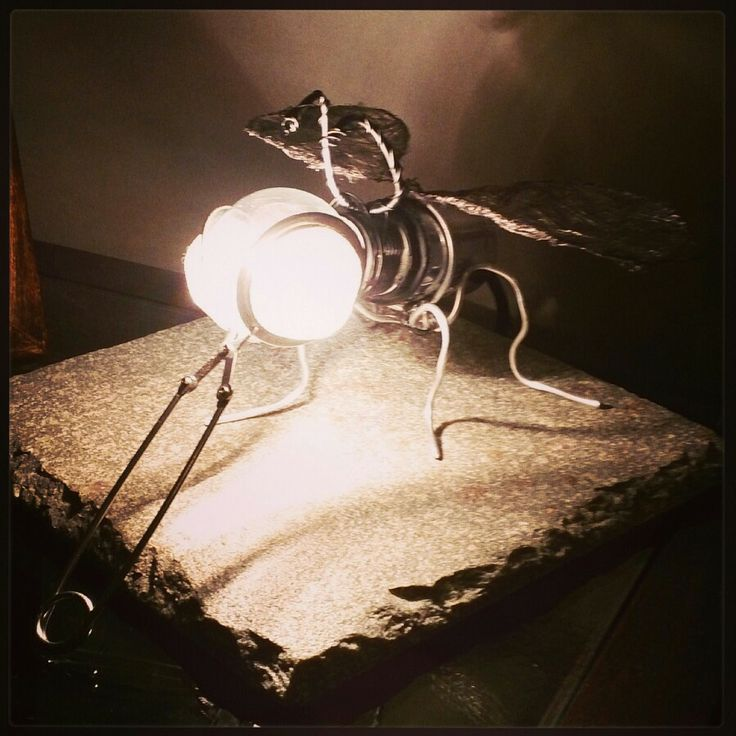 Diy fly-lamp