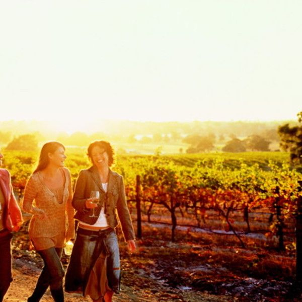 Barossa Valley in Australia ~ Known for their great wines >>> has…
