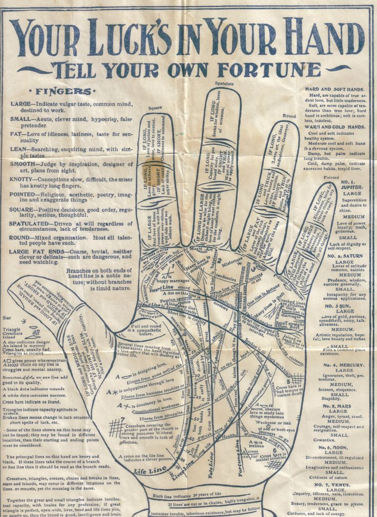 Vintage Palmistry  Tell Your Own Fortune Chart  by ShopHereVintage