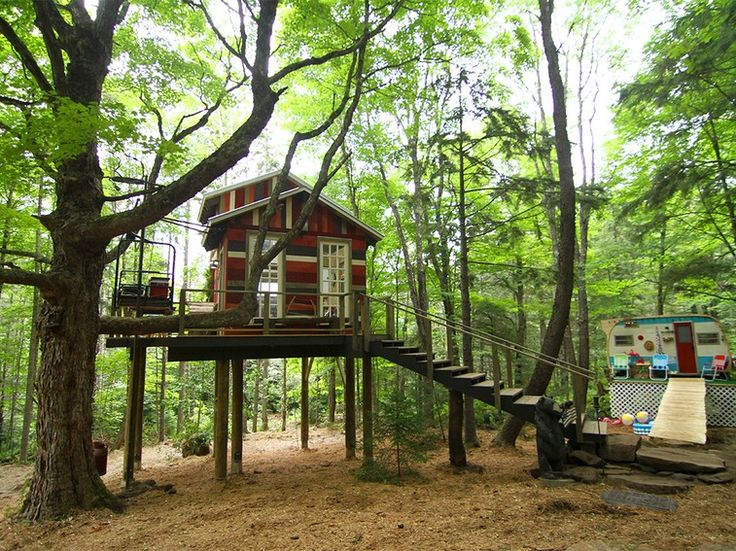 No Ordinary Treehouse On Building Wild Treehouse Treehouse Cabins And Cabin