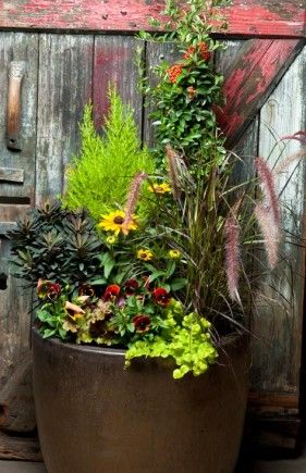 ideas for fall & winter container gardening