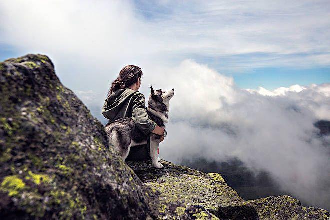 Wandern mit Hund -  Hundeurlaub LandReise.de