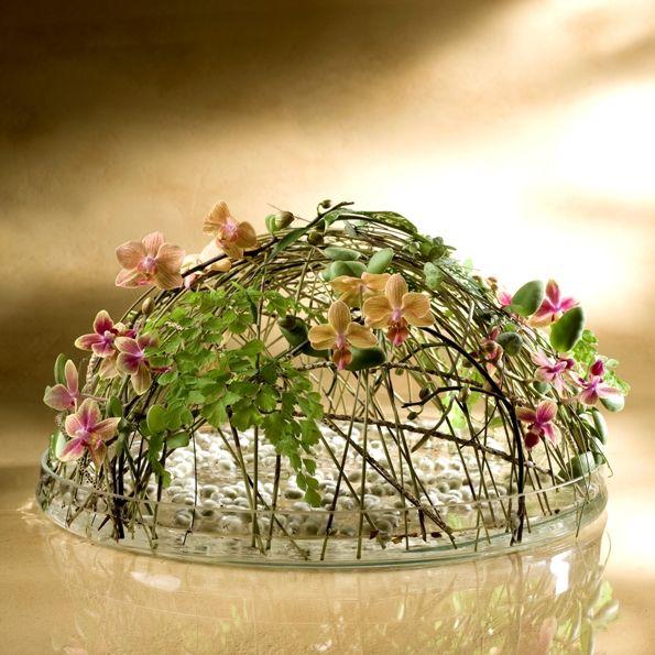 Design of light and flowers Tomas de Bruyne