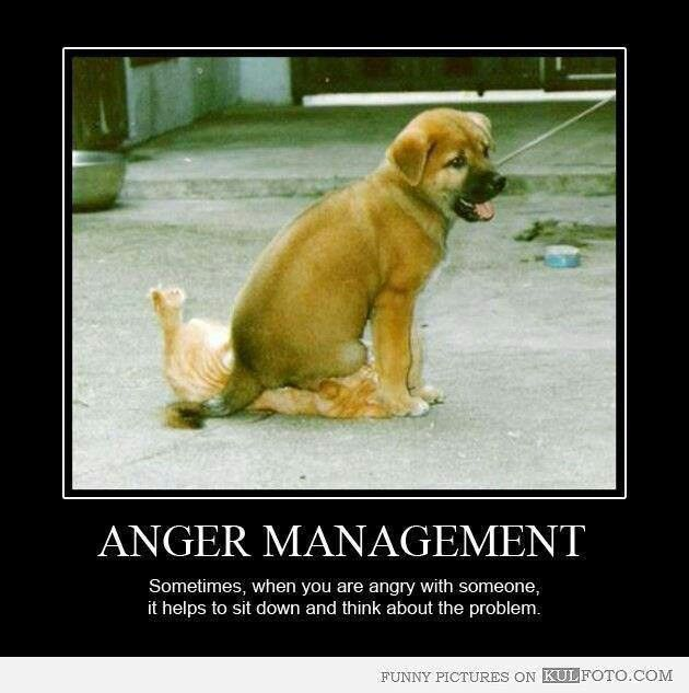 Funny Time Management Quotes: Humorous Quotes About Anger Management. QuotesGram
