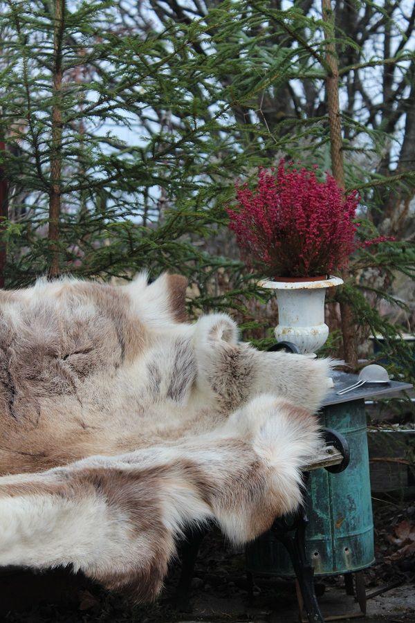 I trädgården fanns flera sittplatser med härligt vara skinn eller skinnfällar att sitta på....och eldar som värmer!