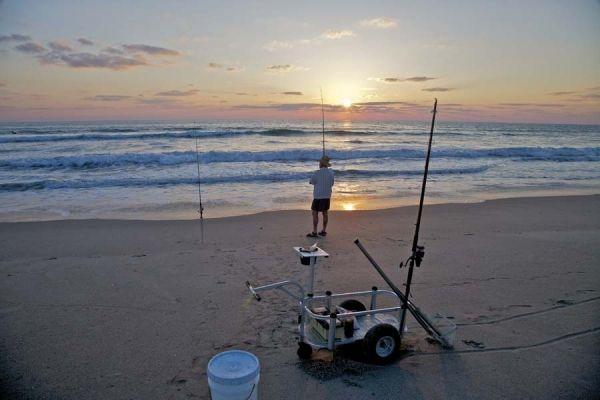 376 best surf fishing images on pinterest fishing stuff for Surf fishing cart