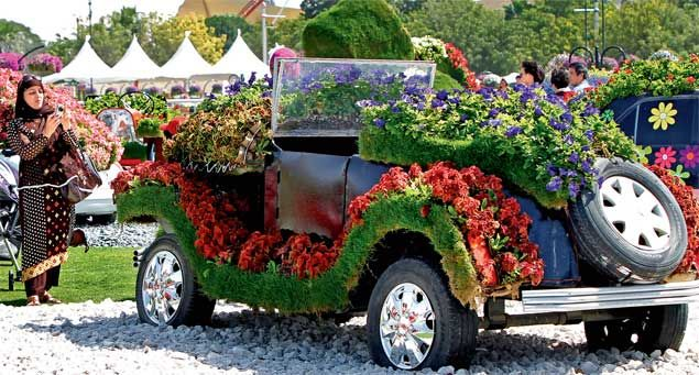 Vintage cars including Mercedes & BMWs, decorated with coleus & carpet grass