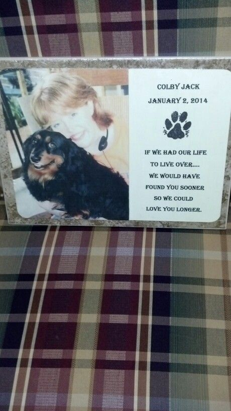 DIY pet headstone for our little Colby. Used a tile, outdoor modpodge and photo of my daughter and Colby.