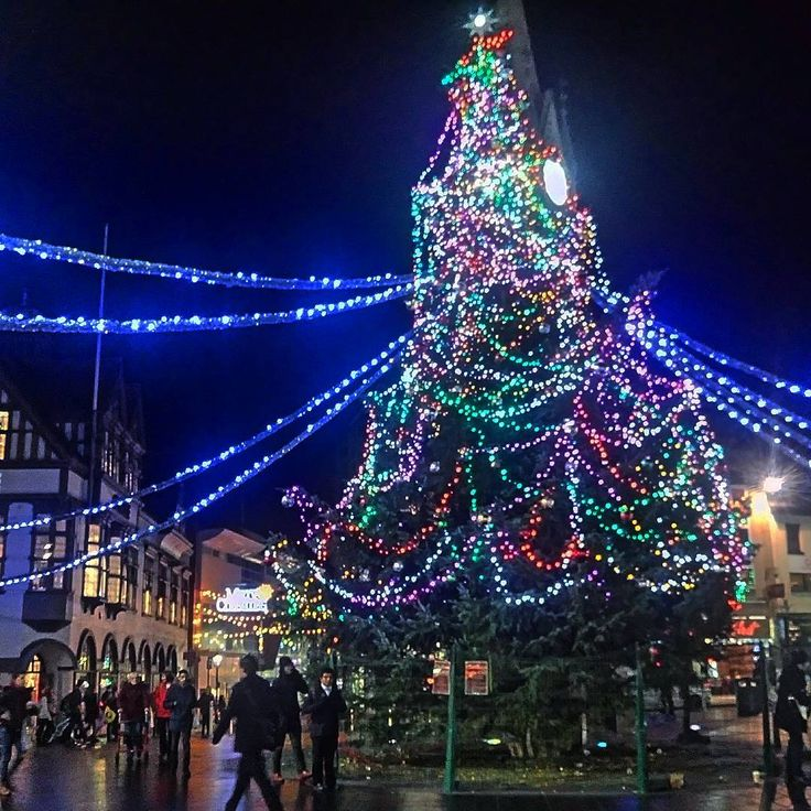 Christmas Tree Shop Dartmouth Ma Rainforest Islands Ferry