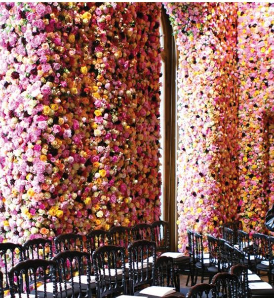 17 Best Images About Extravagant Flowers On Pinterest