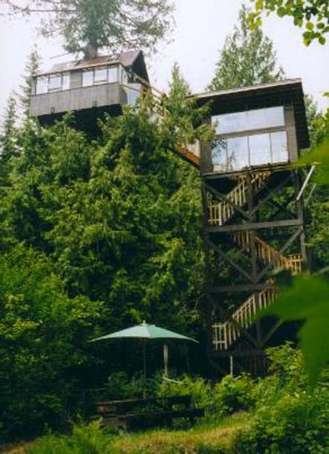 This tree house hotel is in Washington state's Gifford Pinchot National Forest.