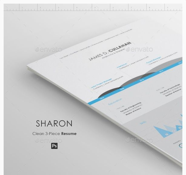 Best Infographic best infographic creator online : 1000+ images about Creative Infographic Resume Templates on ...
