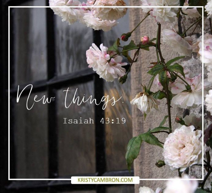"""Behold, I will do a new thing, Now it shall spring forth; Shall you not know it? I will even make a road in the wilderness And rivers in the desert."" —Isaiah 43:19 (NKJV)"