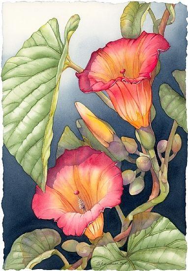 Janine's Hawaiian Bells by Barbara Groenteman Watercolor ~ x