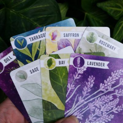 Herbaceous Review: A Flavorful Card Game -