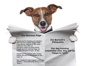 Dog Training Business:  Online Newsletters –really!