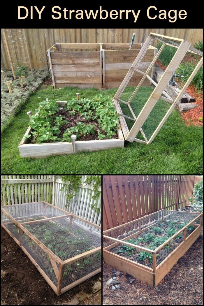 cf9331f9afc8b61f70ce7fee3f6bdda2 - Better Homes And Gardens Raised Vegetable Beds