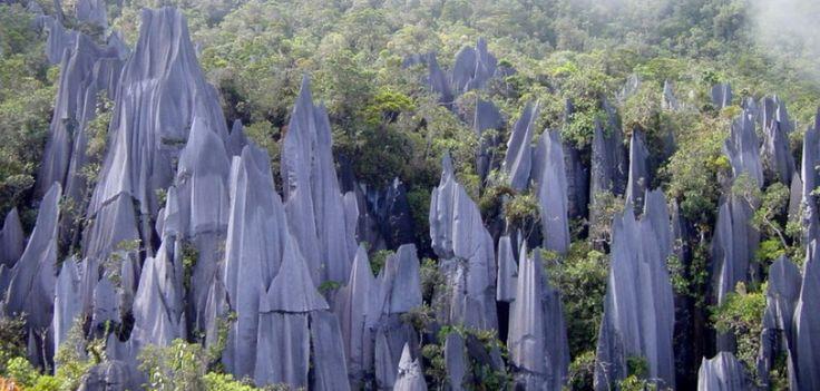 Afilados picos nos saludan en la selva de Gunung Mulu, en #Borneo, de muy difícil acceso. El Parque Nacional de Gunung Mulu es famoso también por albergar una de las mayores redes de cuevas del mundo. ¡Queremos que #viajes! http://j.mp/19dXoFn