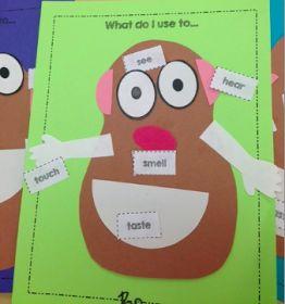Preschool Wonders: 5 {Senses} for Friday!