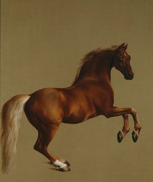 George Stubbs's Whistlejacket (c1762).