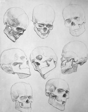 gcse art sketchbook human anatomy - Google Search