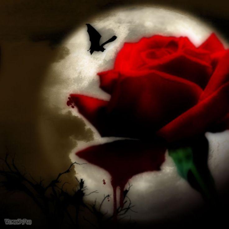 Bleeding Rose | bleeding_rose_by_winch3s7er-d5cyico.jpg