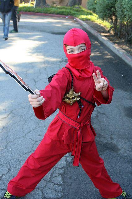 Ninjago Costume