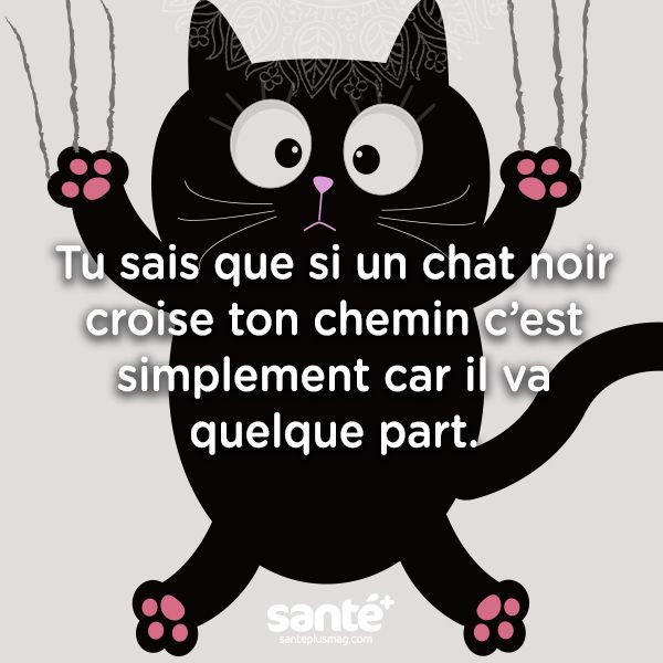 1000 ideas about blague humour noir on pinterest blague humour le chat geluck and offensive. Black Bedroom Furniture Sets. Home Design Ideas