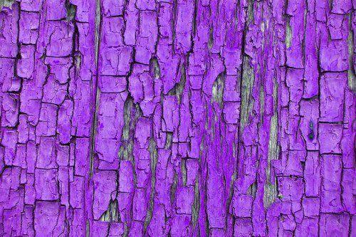 Purple for Tamara