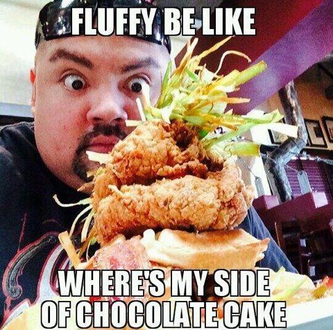 Fluffy Memes- Gabriel Iglesias