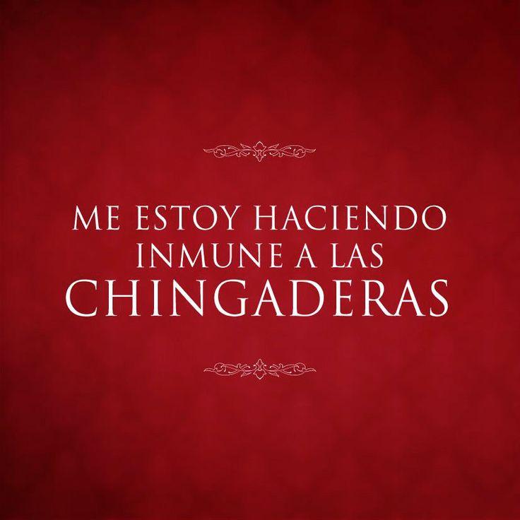 Me estoy haciendo inmune a las chingaderas #Chingaderas #Mexico #Quotes