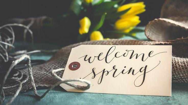 Скачать обои цветы, текст, желтые, весна, тюльпаны, надпись, раздел разное в разрешении 1366x768