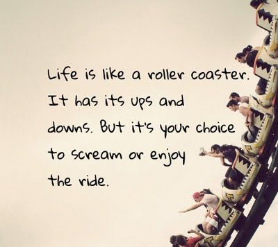life: Rollers, Life, Inspiration, Quotes, Roller Coasters, Enjoy