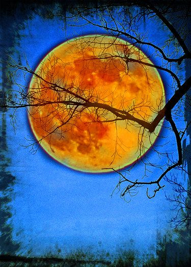 Moon photography. moon print Harvest moon  ATC by LDphotography